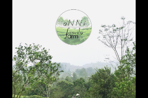 Anni Family Farm