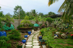 Stay Free and Help our family with some English teaching and in the garden in Tra Vinh